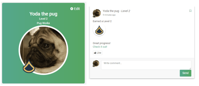 Level up badge